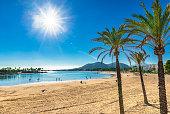 Platja de Alcudia, beautiful sand beach with palm trees on Mallorca, Spain Mediterranean Sea