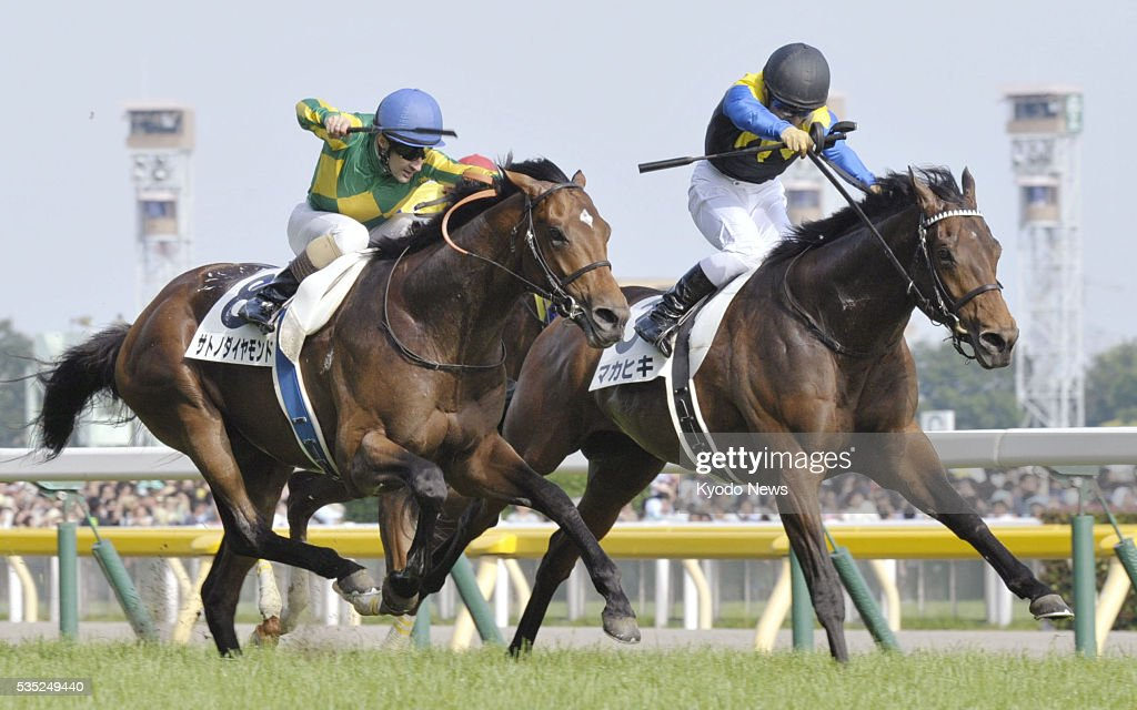 Makahiki (R) holds off Satono Diamond in a photo finish in the Japanese Derby at Tokyo Racecourse on May 29, 2016. The Deep Impact-sired Makahiki became the top 3-year-old in all of Japan as jockey Yuga Kawada and trainer Yasuo Tomomichi won their first Derby.
