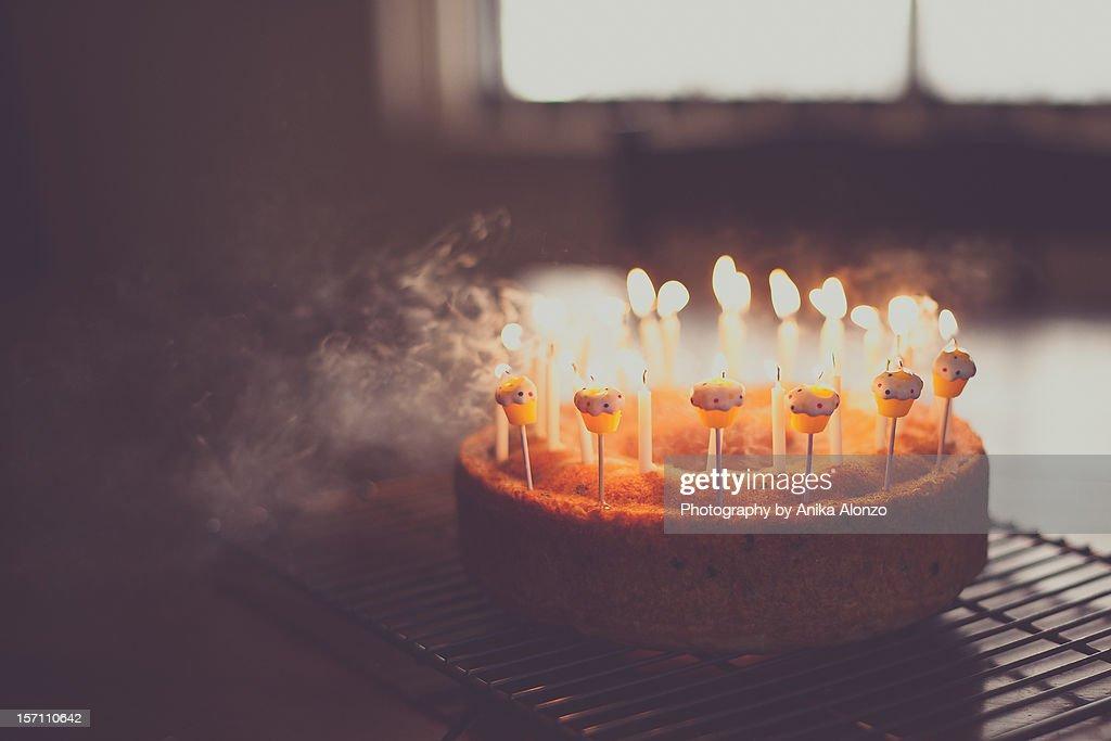 make a wish : Stock Photo
