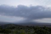 ATLANTA ' 'Make It Rain Down in Africa' Episode 413 Pictured Shamwari Game Reserve in Port Elizabeth South Africa in 2011