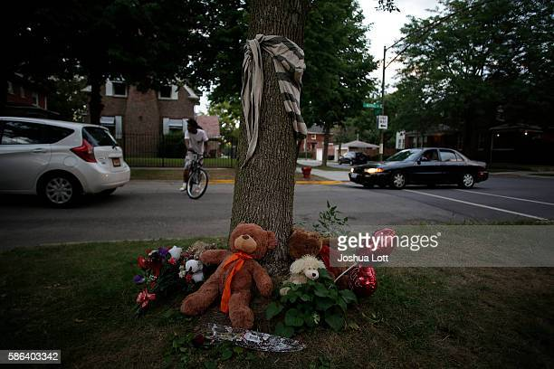 A makeshift memorial with stuff animals and flowers is displayed under a tree for Paul O'Neal on August 5 2016 in Chicago Illinois O'Neal an unarmed...