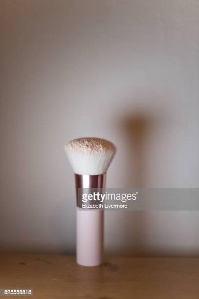 Make-up brush with powder