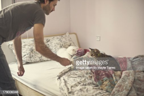 Making the bed with the cats   Stock Photo. Making The Bed With The Cats Stock Photo   Getty Images