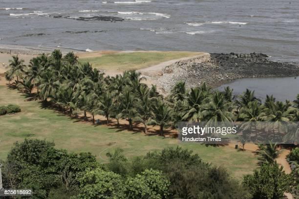 Malabar Hill Priyadarshini Park Arabian Sea Seashore Trees