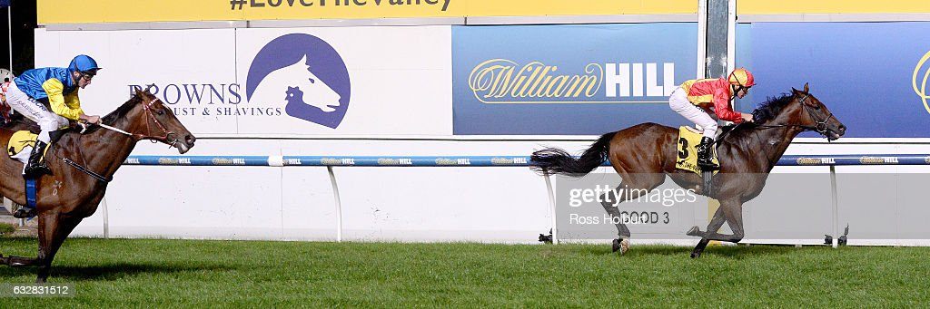 Malaguerra ridden by Ben Melham wins Browns Sawdust & Shavings Australia Stakes at Moonee Valley Racecourse on January 27, 2017 in Moonee Ponds, Australia.