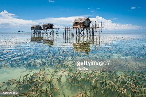 Malaysia, Borneo, Sabah, Tawau, Semporna, Stilt huts reflected in sea shoals overgrown with seaweed