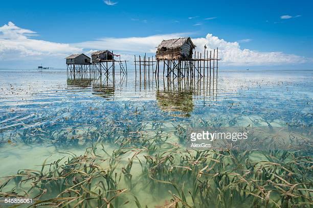Malaysia, Borneo, Sabah, Tawau, Semporna, Stilt huts reflected in sea shoals overgrown with seaweed