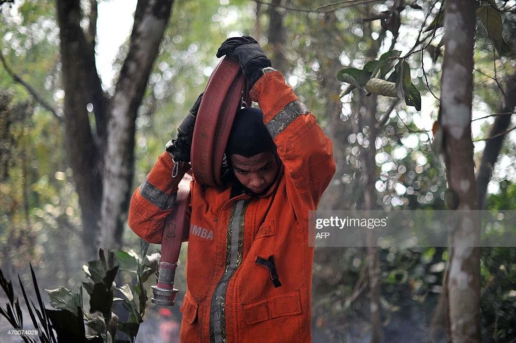 A Malaysian fireman carries a hose while fighting a bushfire in Taman Bukit Melawati park in Kuala Lumpur on February 18, 2014. There were 312 bush fires reported nationwide on February 12 in just 24 hours during a dry spell this month in Malaysia, local media reported.