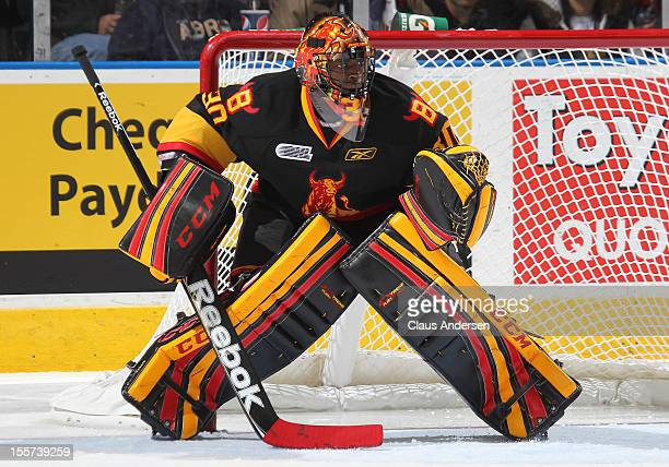 Malcolm Subban of the Belleville Bulls watches the play in an OHL game against the London Knights on November 2 2012 at the Budweiser Gardens in...