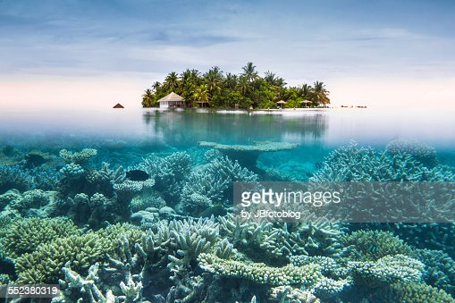 Maldives Half Water