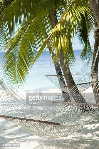 Maldives, Hammocks on white sandy beach