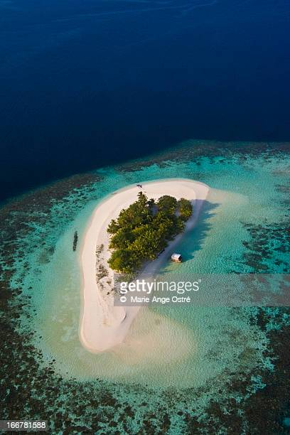 Maldives island and coral reef