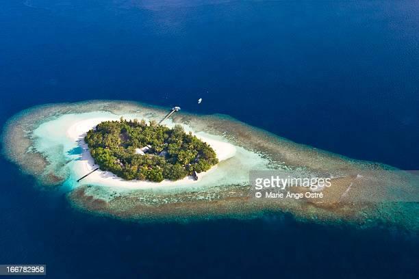 Maldives island / ?le Maldives