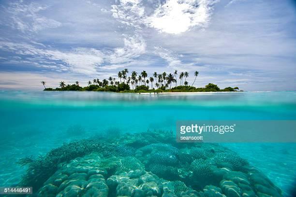 'Maldives, Island on sunny day'