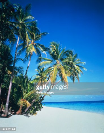 Maldives, Nakachafushi, tropical island beach : Foto stock