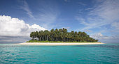 Maldives, Palm trees on isolated island