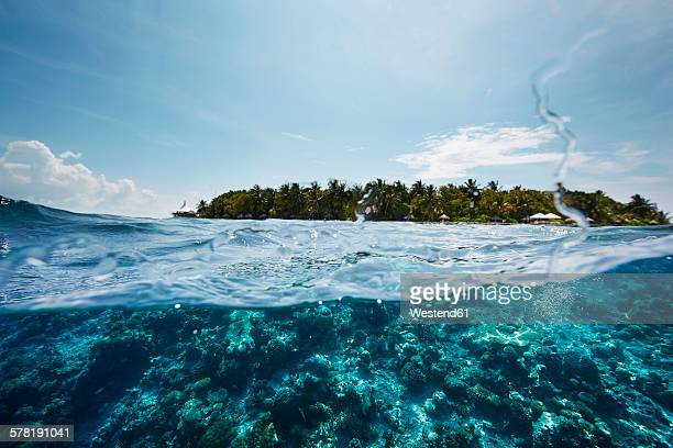 Maldives, view from the Indian Ocean to an island