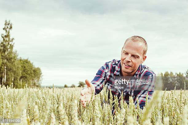 Male agronom agriculture worker researching