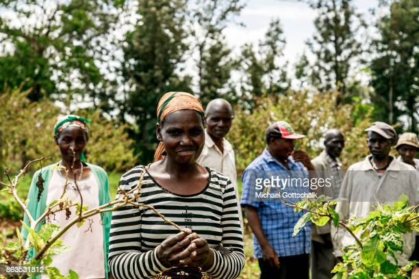 Male and female farmers at a field of a farm on which plants grow with the support of the irrigation system of local farming cooperative Mitooini The...