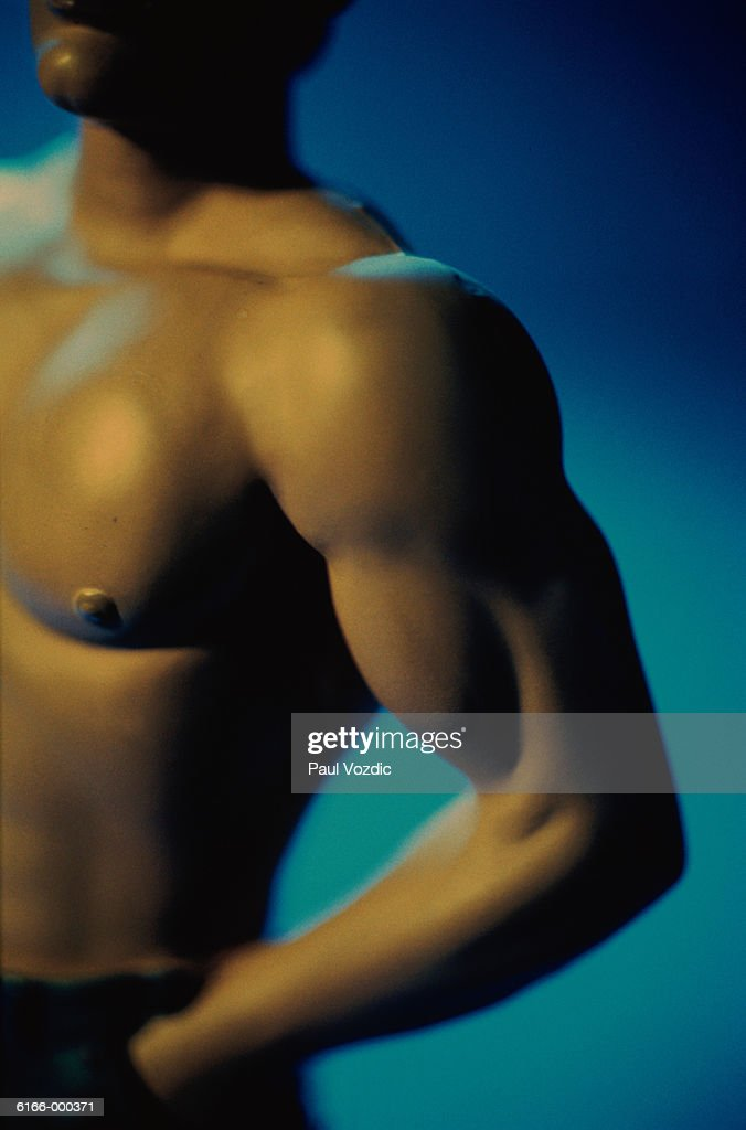 Male Arm and Torso : Stock Photo