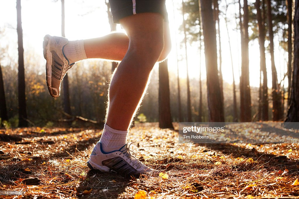 Male athlete jogging in woods. : Stock Photo