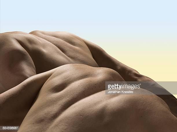 Male backs, close up
