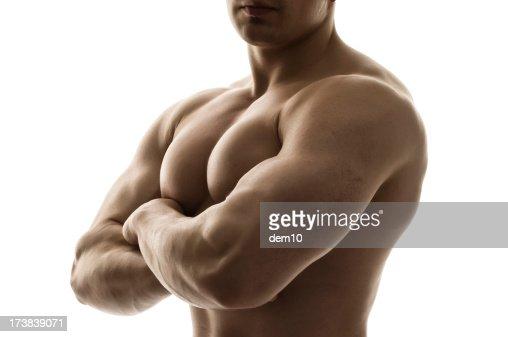Male body builder : Stock Photo