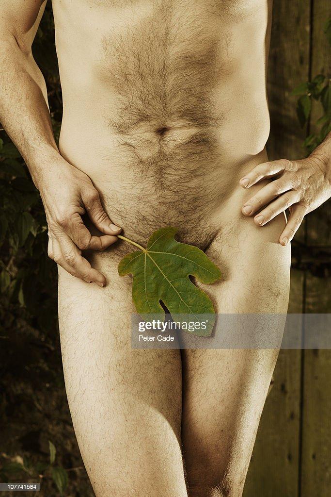male body figleaf : Stock Photo