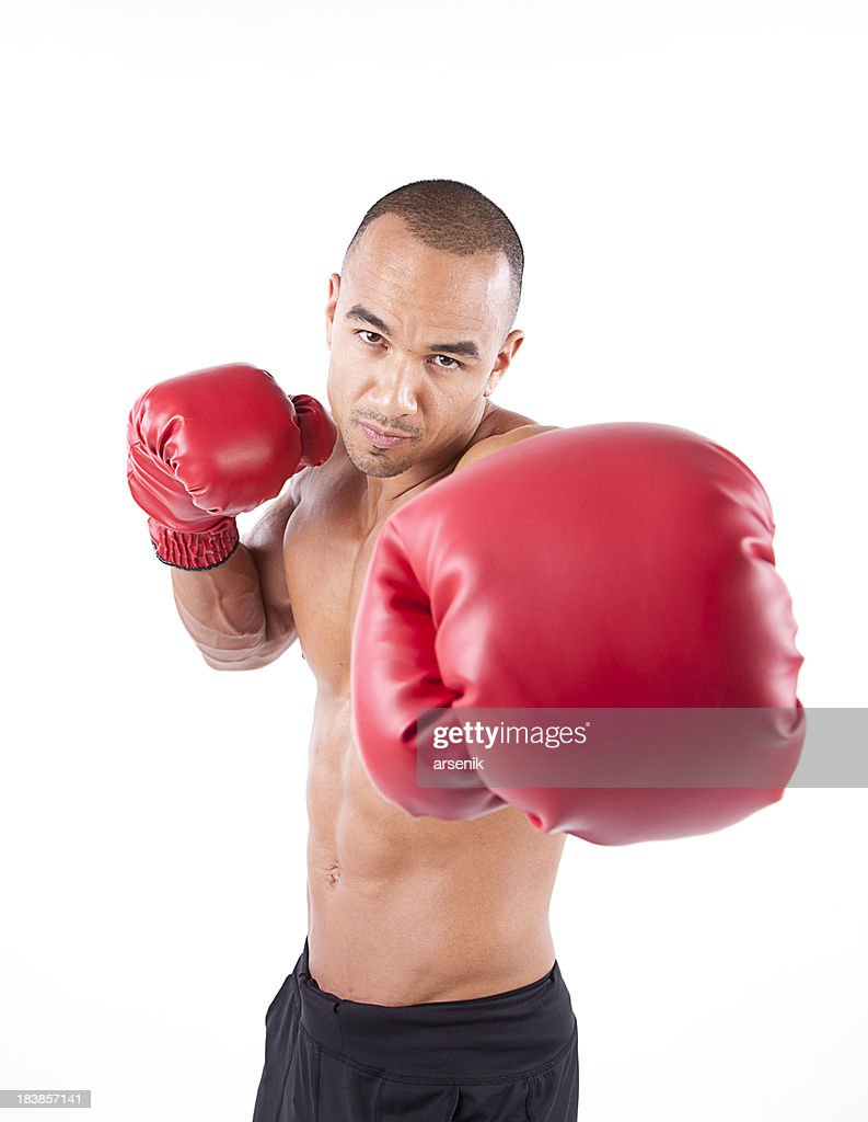 Male Boxer : Stock Photo