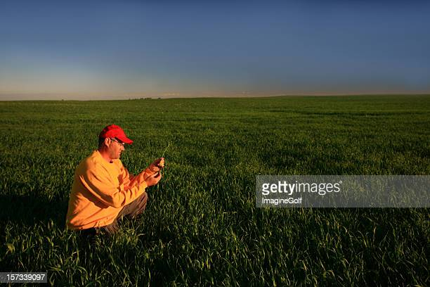 Male Caucasian Farmer Inspecting His Wheat Crop