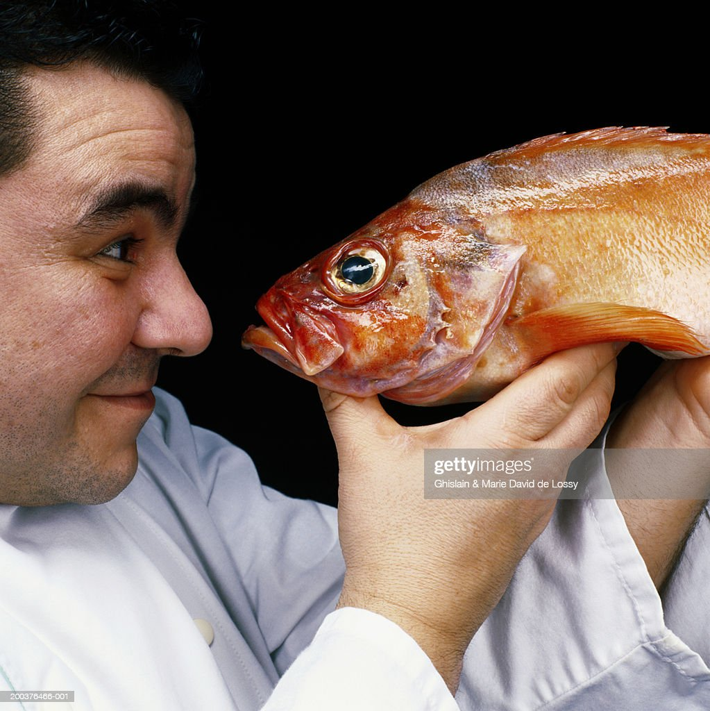 Male chef looking at fish, side view, close-up : Stock Photo