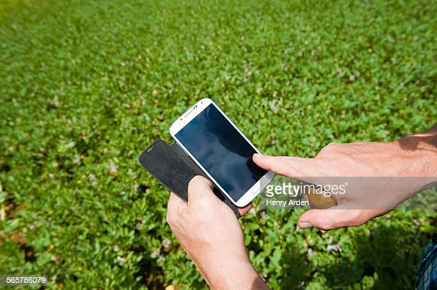 Male farmers hand using smartphone touchscreen in green field