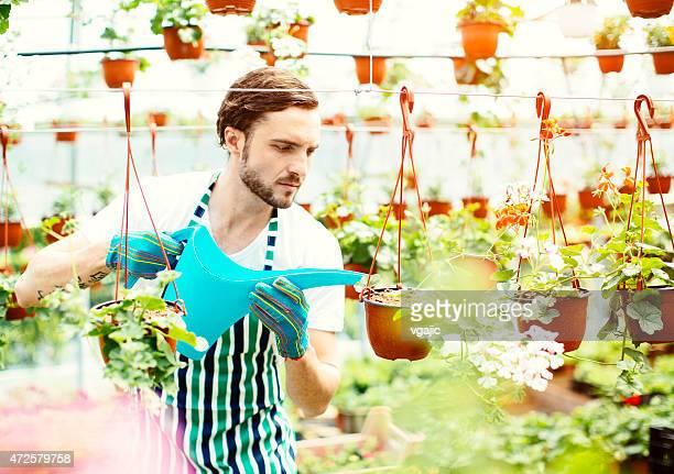 Männlich Florist gießen Blumen.