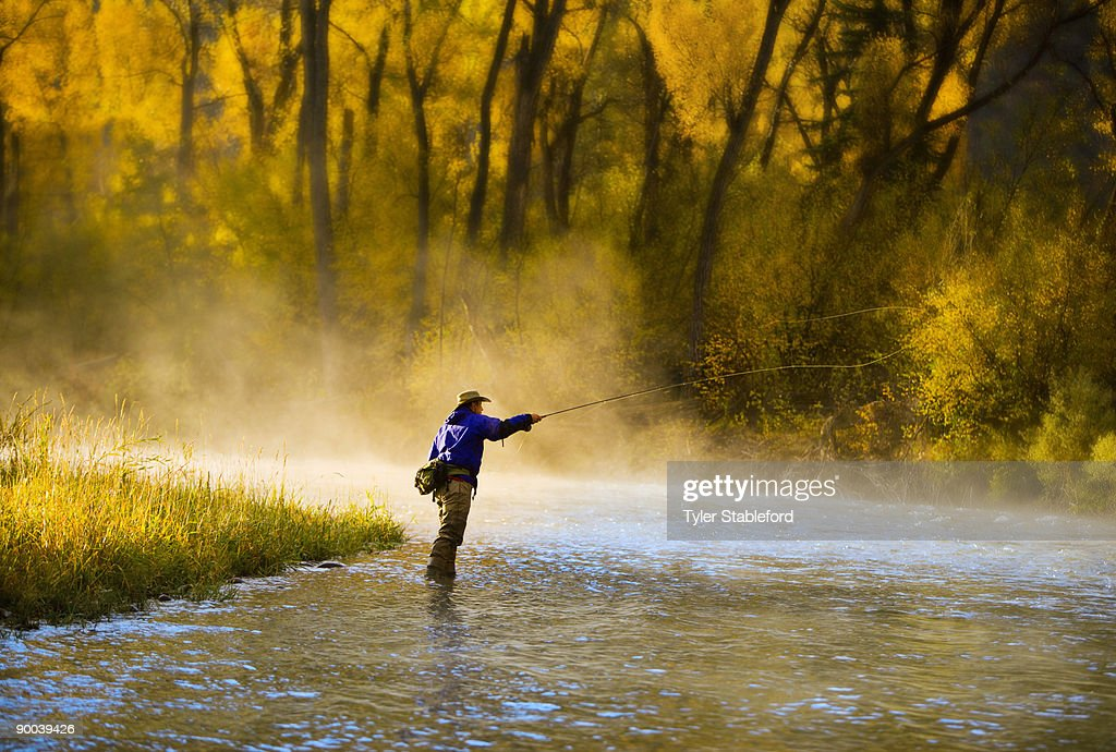 Male fly fisherman casting on the river. : Stock Photo