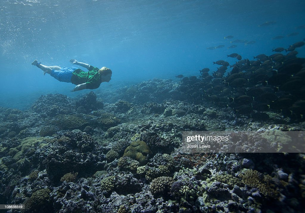 male free diver with fish in Fiji : Stock Photo
