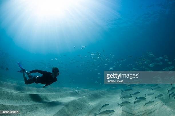 Male free diving w/sandy bottom and fishes