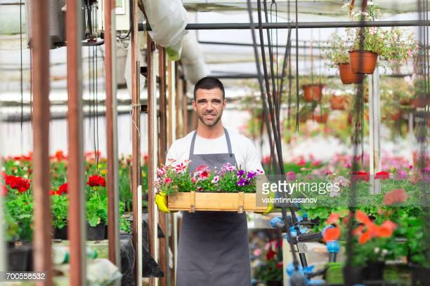 Male garden center worker carrying a crate with flowers