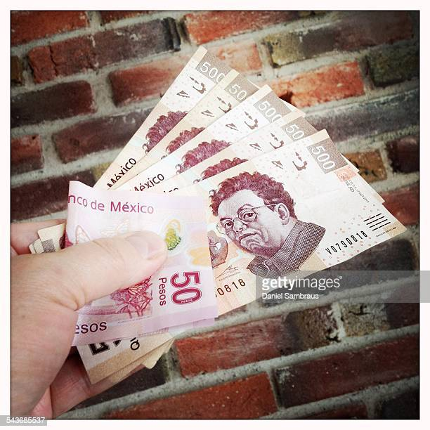 A male hand holding Mexican pesos notes The 500 peso note has the image of Diego Riviera