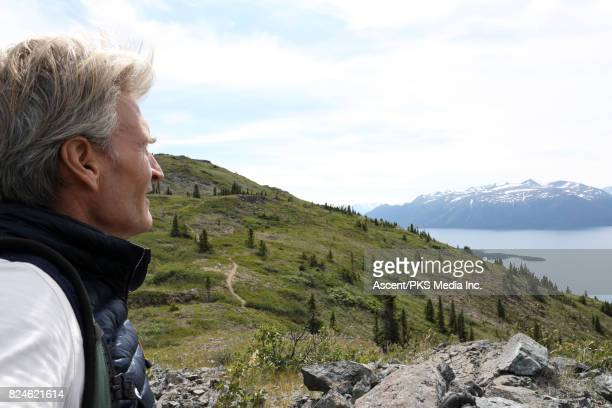 Male hiker looks out to forest scene and mountains