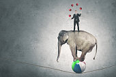 Portrait of a male manager juggling with many red balls while standing above circus elephant
