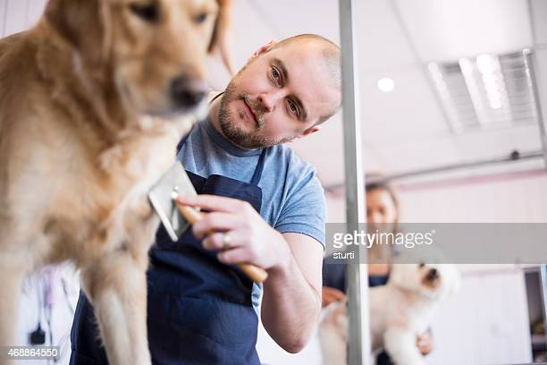 male pet grooming salon owner and staff
