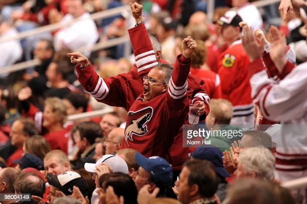 A male Phoenix Coyotes fan cheers during a game against the Chicago Blackhawks on March 20 2010 at Jobingcom Arena in Glendale Arizona