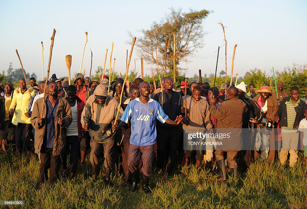 Male relatives of candidates for a traditional circumcission rite sing in Kenya's western county of Webuye on August 11 2016 on their way for the...