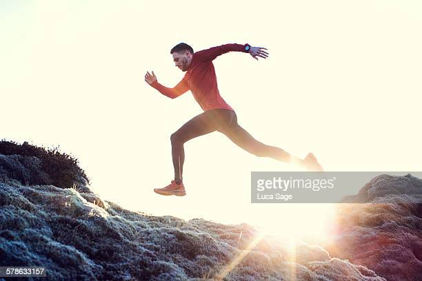 Male runner leaps through sunlit grassy landscape