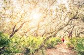 Male runner on training run through woods at sunset