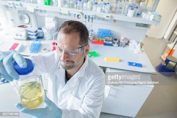 Male scientist looking at bottled sample in biology laboratory