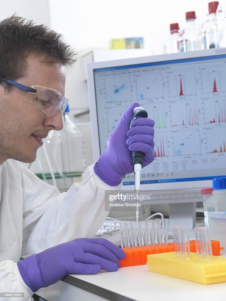 Male scientist pipetting sample into test tubes for analysis of cell population : Stock Photo