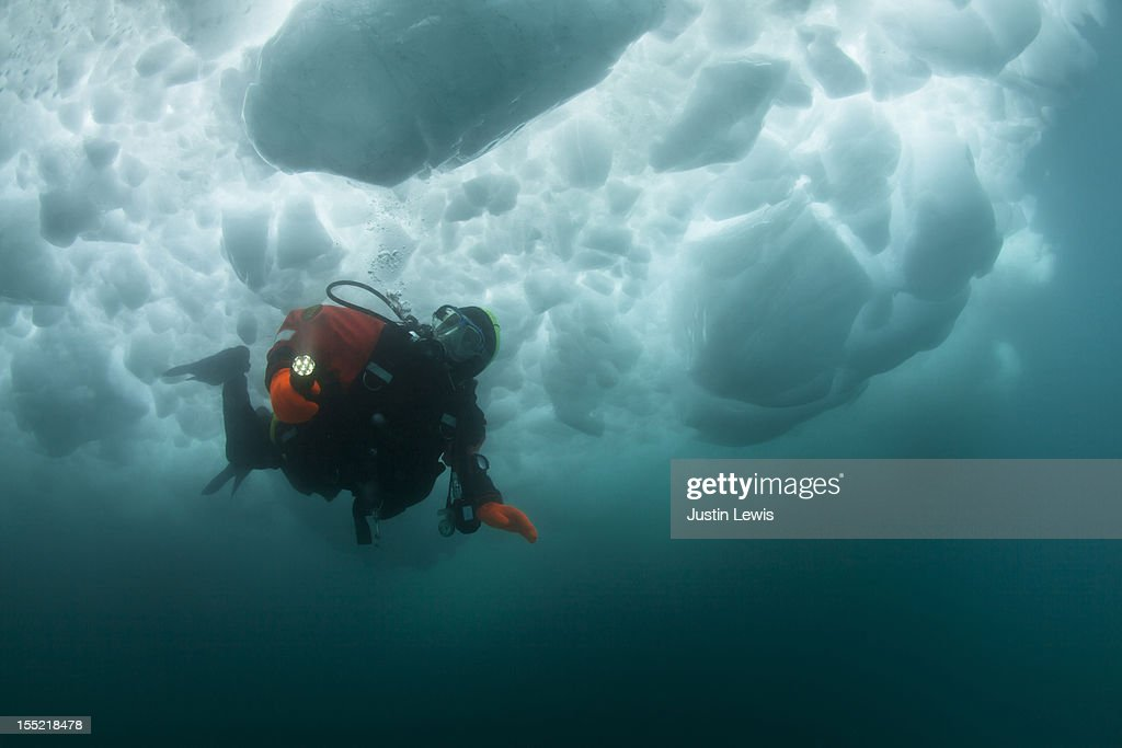 Male scuba diver swimming under an iceberg : Stock Photo