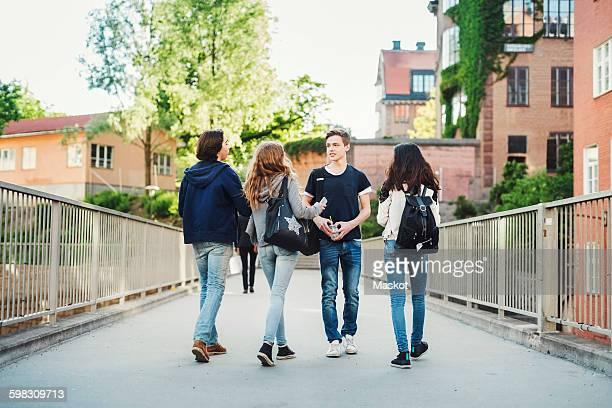 Male teenager walking with friends on bridge