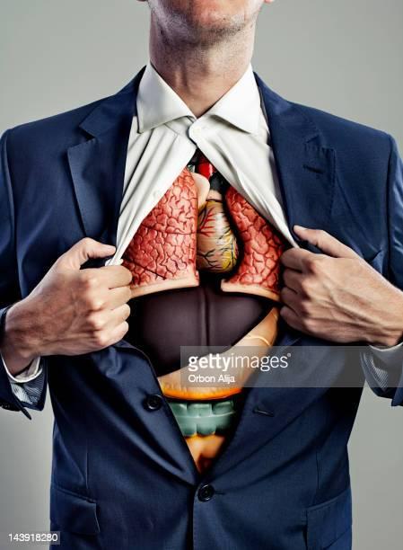 torso masculino con órganos internos visible